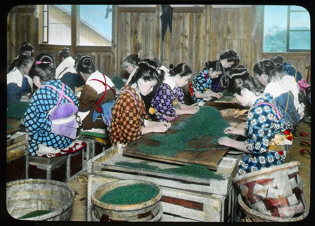 Chùm ảnh xưa về trà Nhật Bản 14