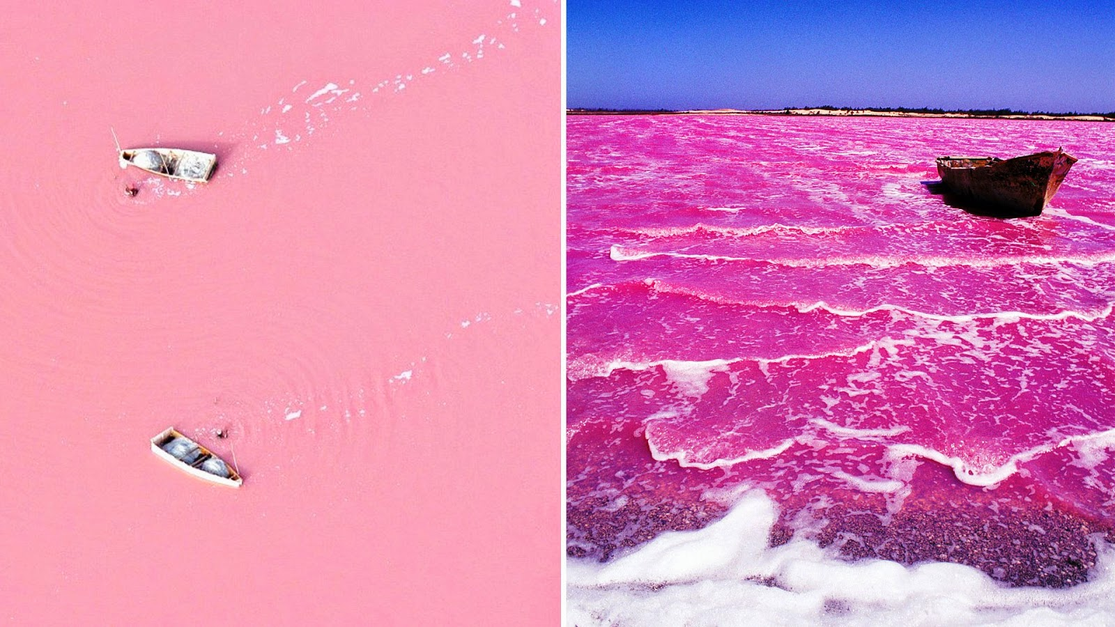 That The Color Is Not A Trick Of Light Can Be Proved By Taking Water From Lake In Container Pink Found To Permanent
