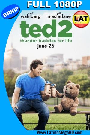 TED 2 (2015) Latino Full HD 1080P ()