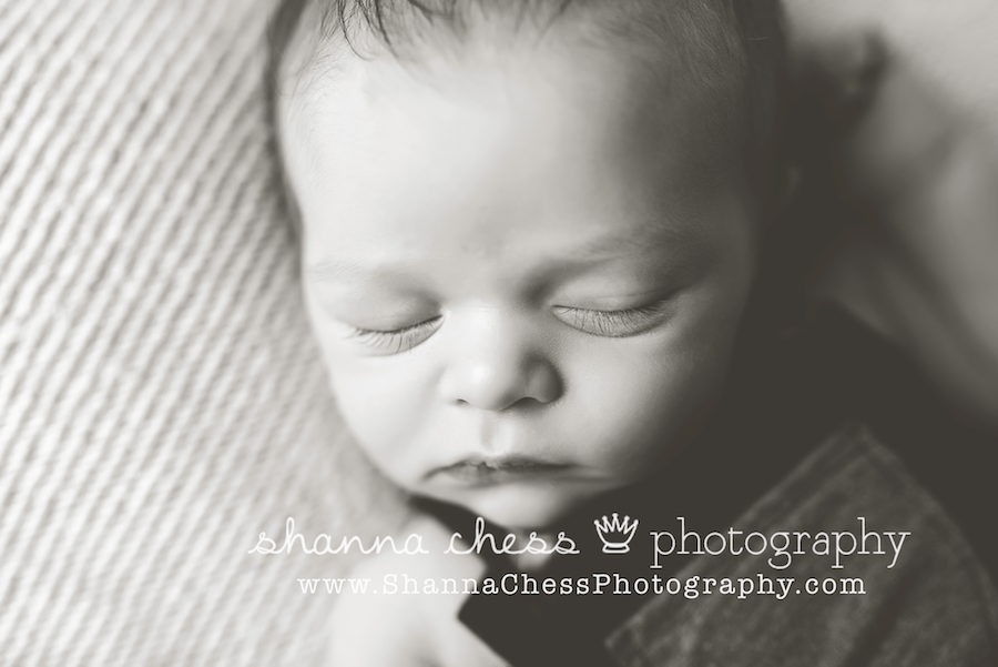 eugene, oregon newborn photography