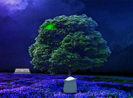 Little Zebra Moon Forest Escape Solución Ayuda Pistas