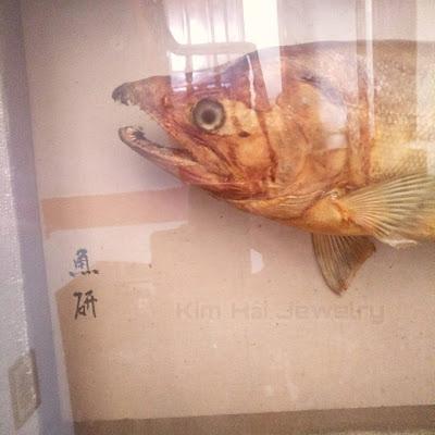 là loài cá ăn thịt có hàm răng sắc nhọn