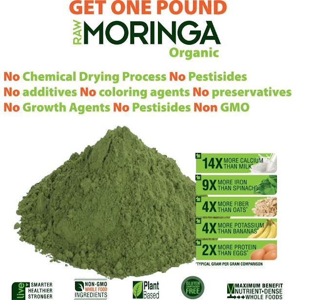 moringa oleifera leaves uses