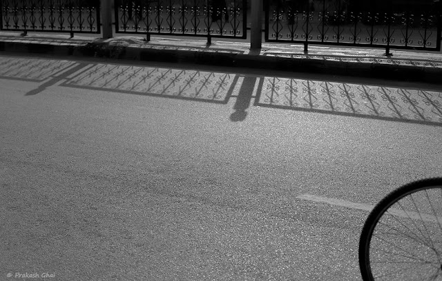 A Black and White Minimal Art Photograph of Long Shadow of Railing Vs a Part of a Bicycle Tyre