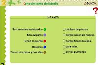http://www.ceiploreto.es/sugerencias/A_1/Recursosdidacticos/SEGUNDO/datos/03_cmedio/03_Recursos/actividades/03/act3.htm