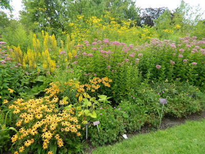 Toronto Botanical Garden late summer perennial border by garden muses-not another Toronto gardening blog