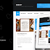Gridify - Premium WordPress Theme for Collectors