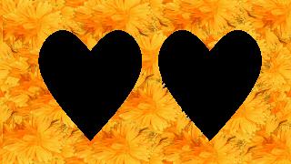 6 Moldura flores 2 corações png
