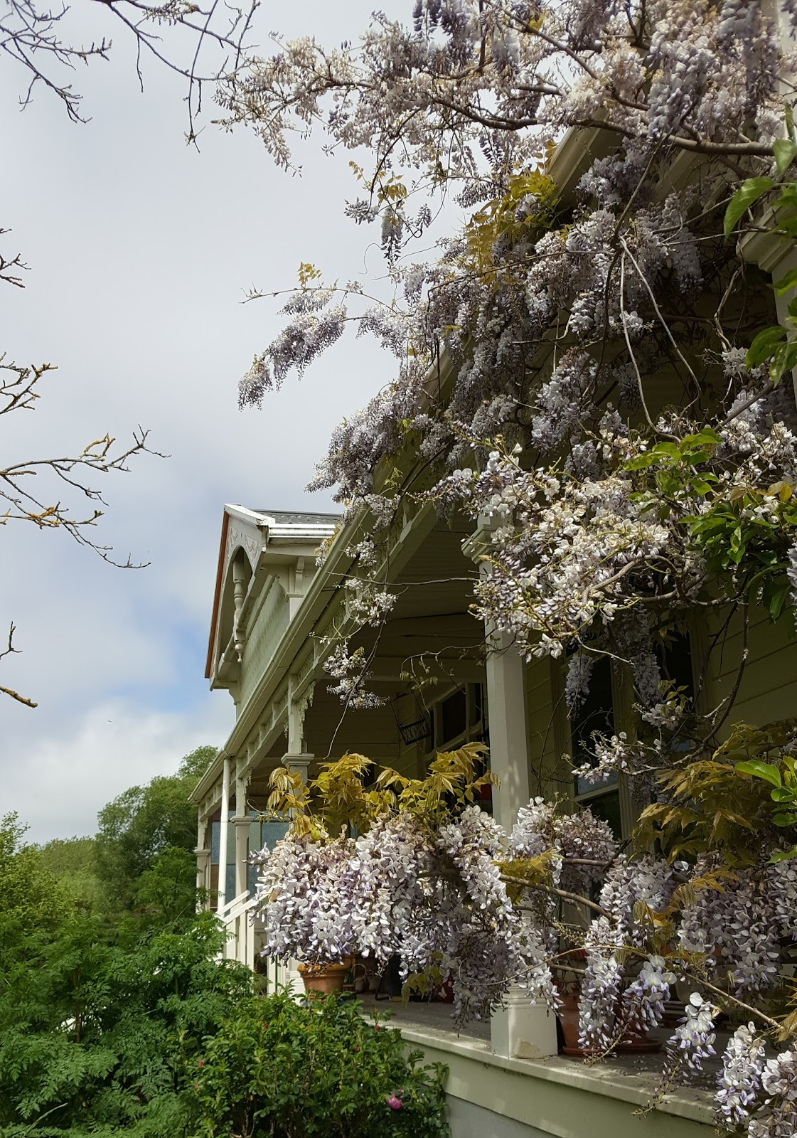 Lady Mondegreen\'s Secret Garden