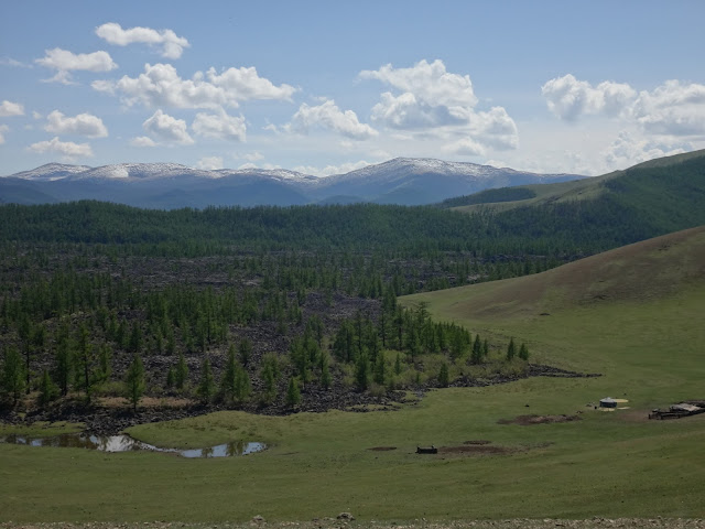 Tree-ring research helps analyze droughts in Mongolia