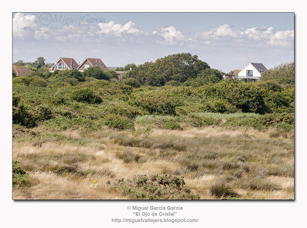 Hayling Island.