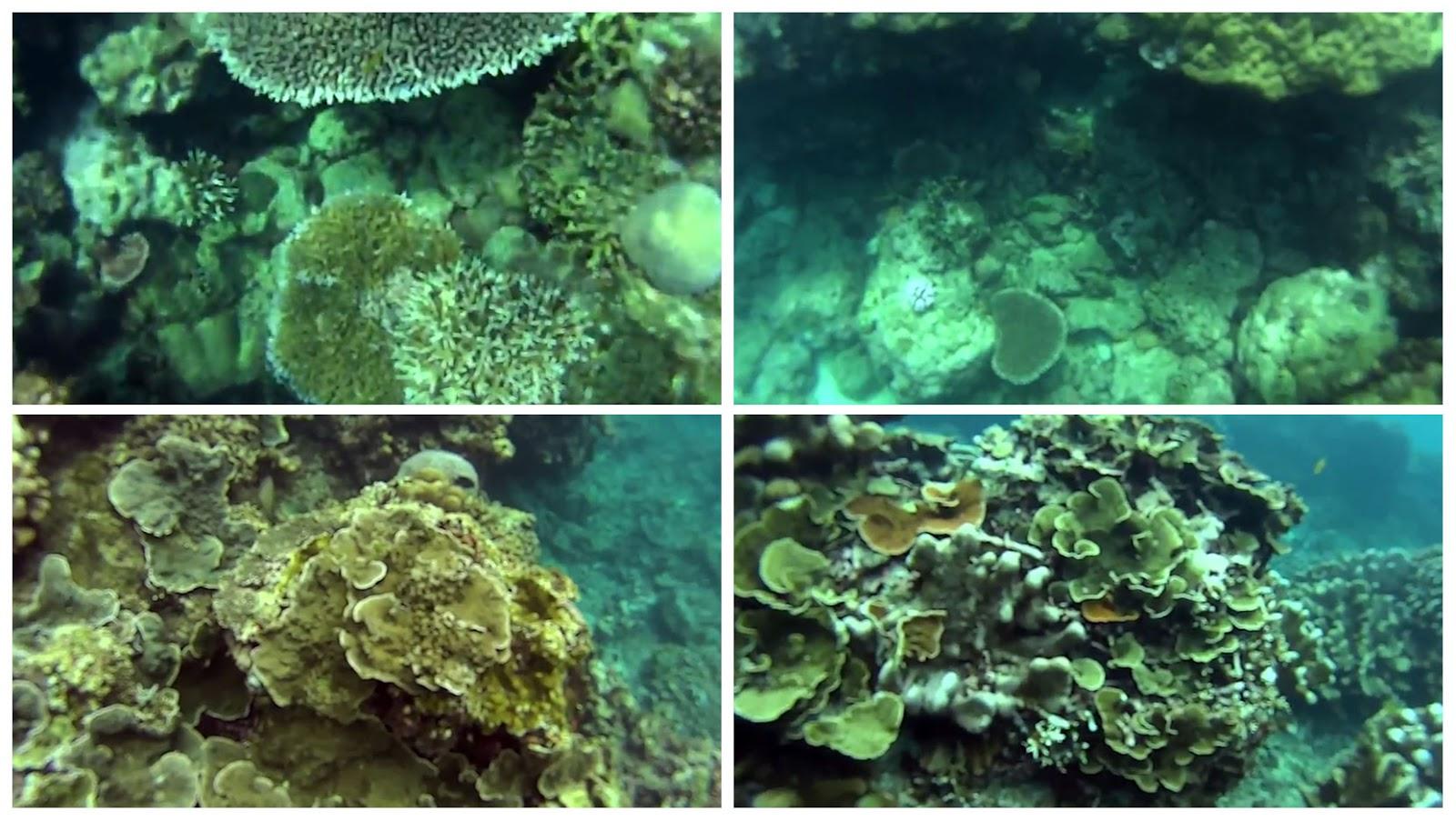 Pantai Sire Lombok
