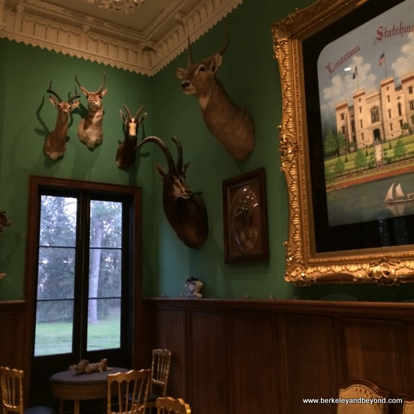room with taxidermy heads at Houmas House Plantation and Gardens in Darrow, Louisiana