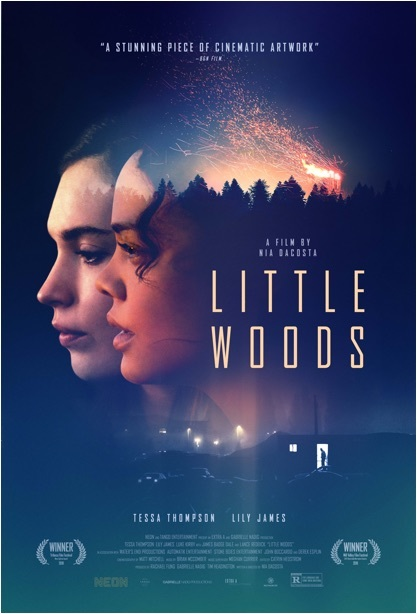Little Woods 2019 movie poster
