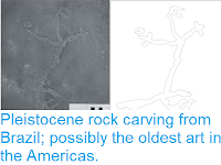 http://sciencythoughts.blogspot.com/2012/02/pleistocene-rock-carving-from-brazil.html