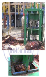Mesin Hydrolic Pembelah Tandan Sawit
