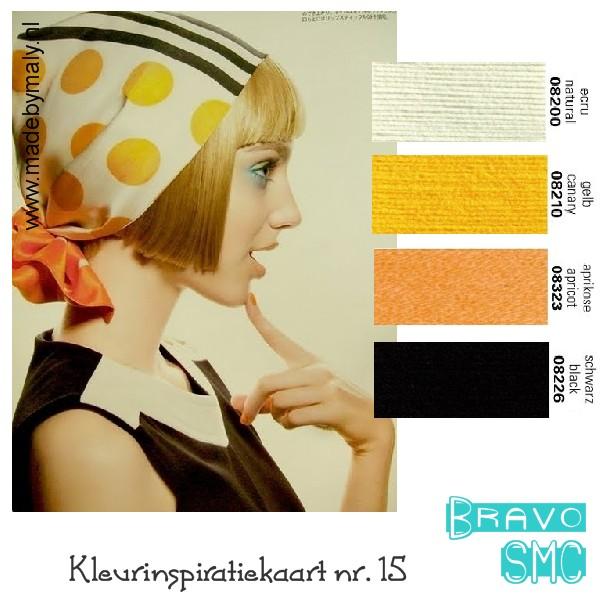 kleurencombinatie+nr.+15+bravo.jpg
