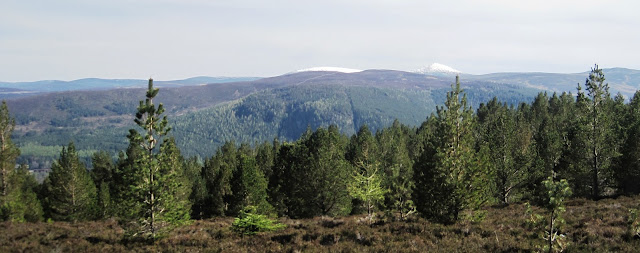 View across Deeside