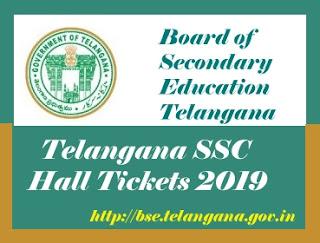 TS SSC Hall ticket 2019, SSC Hall tickets 2019 TS, 10th Class Hall tickets 2019 TS