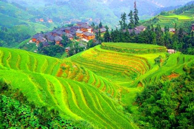 aldeia yangsi terra dos anoes
