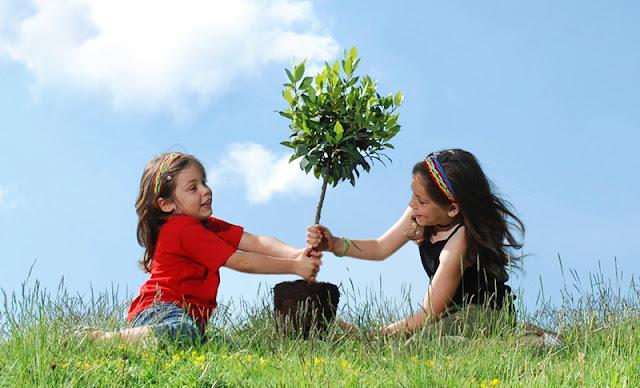 Psicologia e Meio Ambiente, ambiental, importancia defina comportamentos pró-ambientais