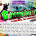 Cd (Mixado) Novo Guanabara o Original da Saudade(Studio Audio Mix Produções)