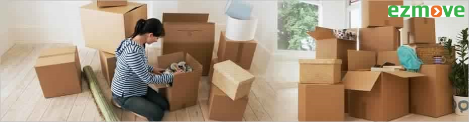 Professional Packers and Movers Services Provider in India - EZMove