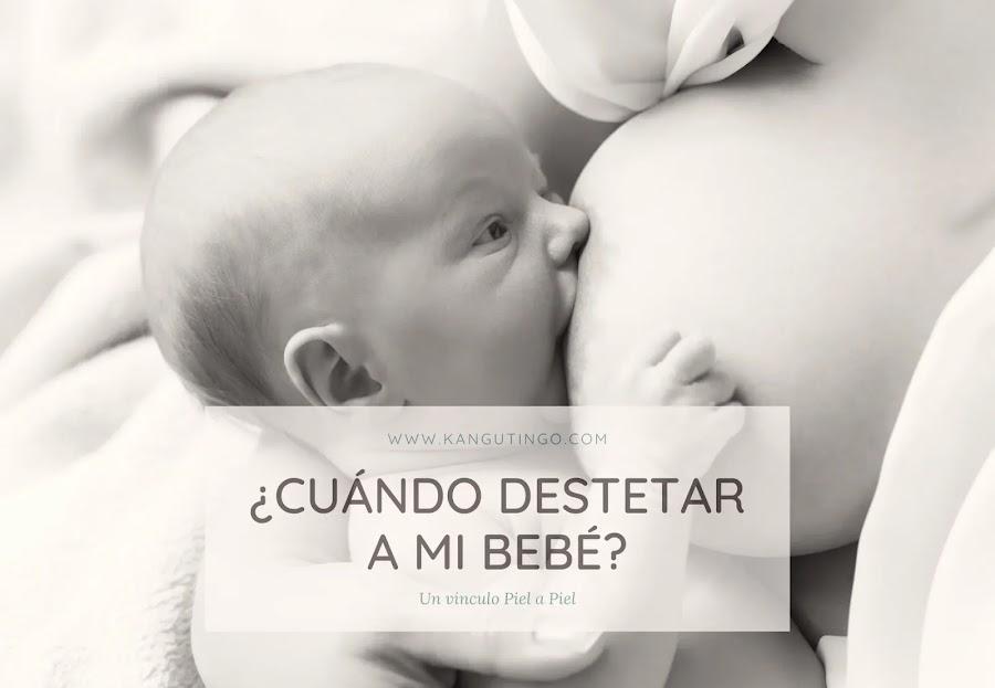 ¿Cuándo Destetar a Mi Bebé?