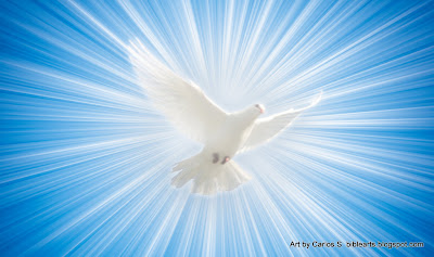 http://3.bp.blogspot.com/-9b8ofyHhpdc/T-CgbeojXrI/AAAAAAAAILQ/SB_z-ok1uSQ/s400/real_dove_from_heaven_light_dove_holy_ghost.jpg