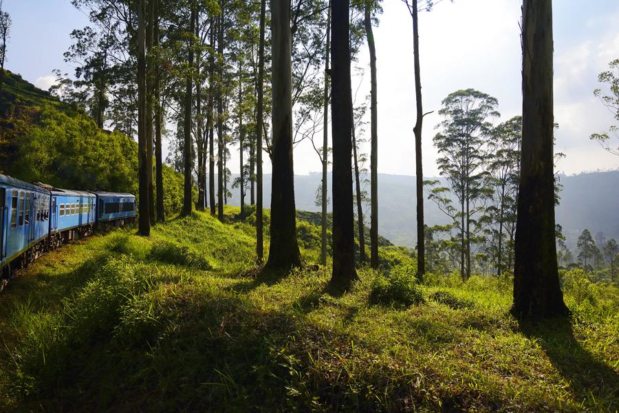 Najpiękniejsza trasa kolejowa Kandy Ella