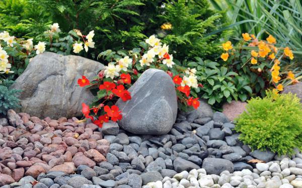 conseils pratiques de jardinage et plantes. Black Bedroom Furniture Sets. Home Design Ideas