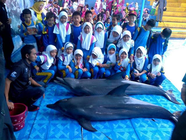 Segera Hadir Pentas Lumba lumba dan Aneka Satwa Sumatera.
