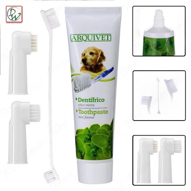 toothpaste and toothbrush for dog and cat