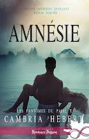 https://lachroniquedespassions.blogspot.com/2018/10/les-fantomes-du-passe-tome-1-amnesie-de.html