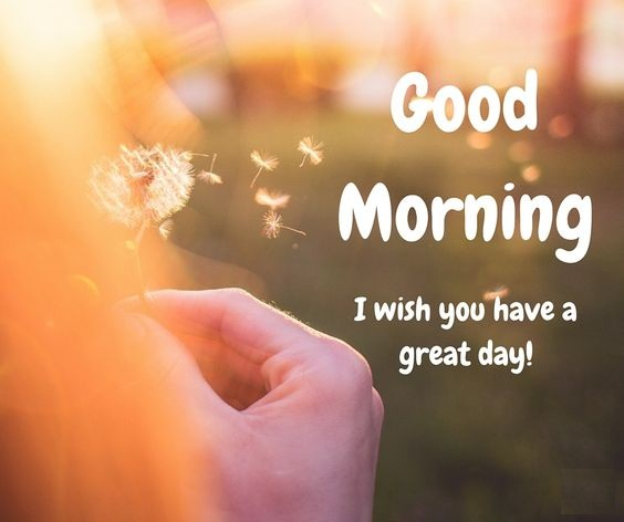 good morning nature quotes and thoughts