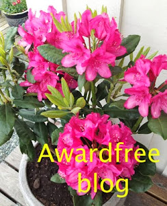 Awardfree blog