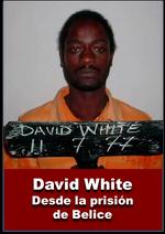 Testimonio de David White