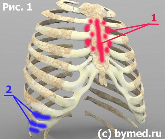 Зоны лёгких и толстого кишечника