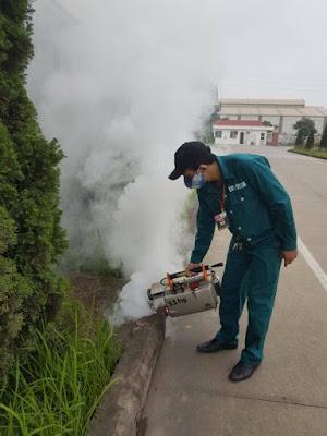 Diệt muỗi, diệt côn trùng tại Thái Bình