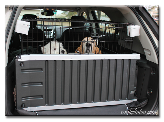 Our Solvit Pet Ramp fits perfectly in our SUV
