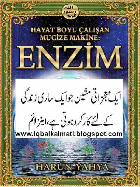 Miracle of The Enzyme in Urdu by Harun Yaha PDF Book ...