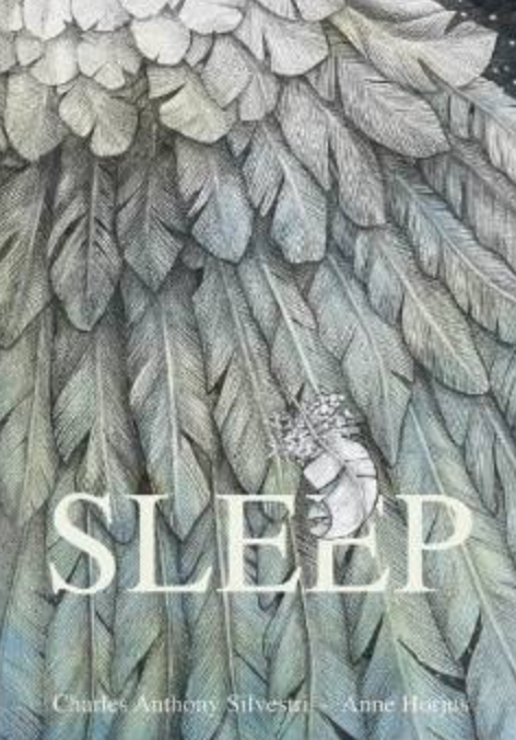 Sleep:  A great picture book for the music room! Blog post includes other great picture books!