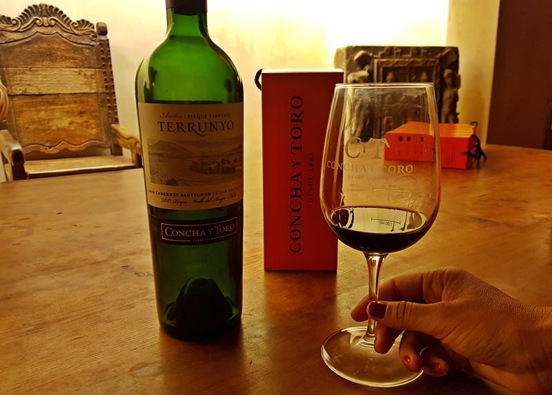 Tour a vinícola Concha y Toro Santiago