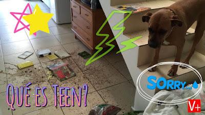 Campaña V+ Teen