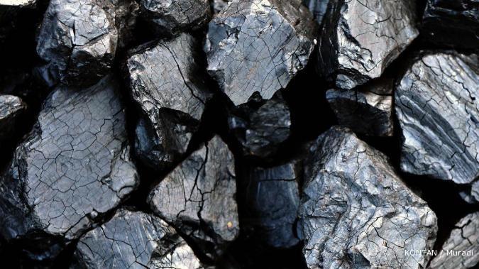 Artikel Geologi Genesa Batubara