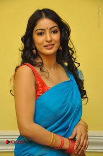 Telugu Actress Vaibhavi Stills in Blue Saree at Www.Meena Bazaar Movie Opening  0049.JPG
