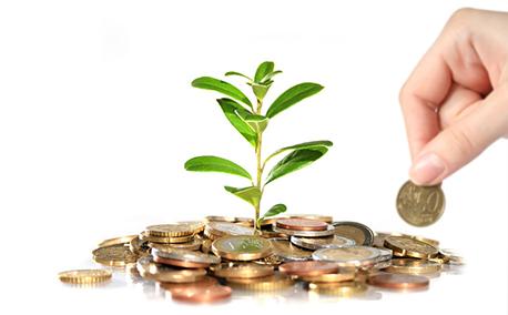 Educación y Economía - Charkleons.com