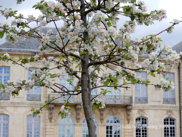 Image of the Musee Rodin Paris on Capturing Paris blog