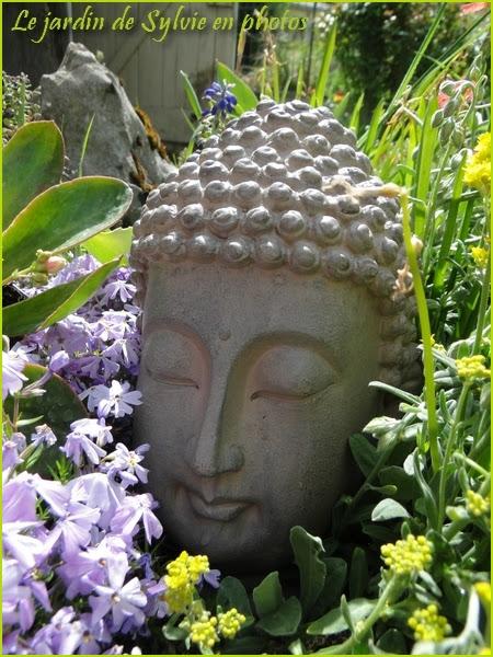 Floraison printanière et décoration de jardin...