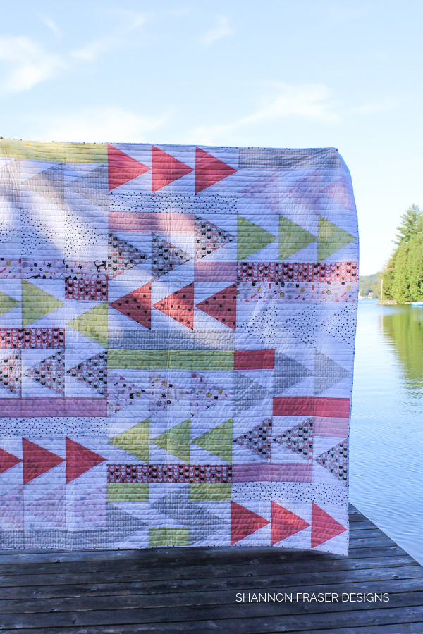 Flight Plan quilt in the wild | Shannon Fraser Designs